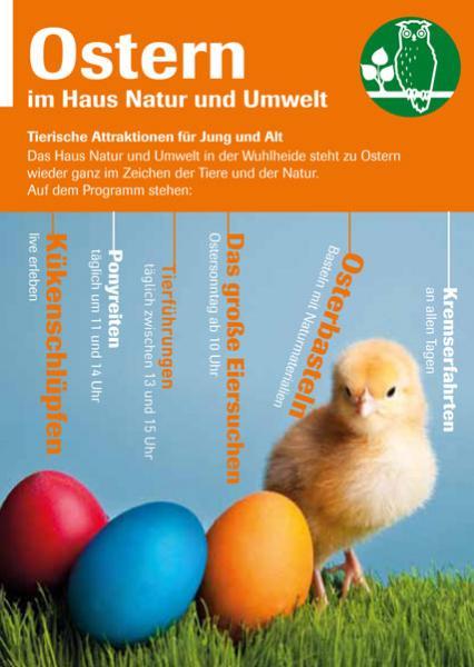 Ostern Mit Lämmern Und Küken Das Haus Natur Und Umwelt Lädt Ein